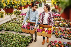 זוג בוחר פרחים לגינה