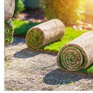 בשביל הדשא דשא מוכן